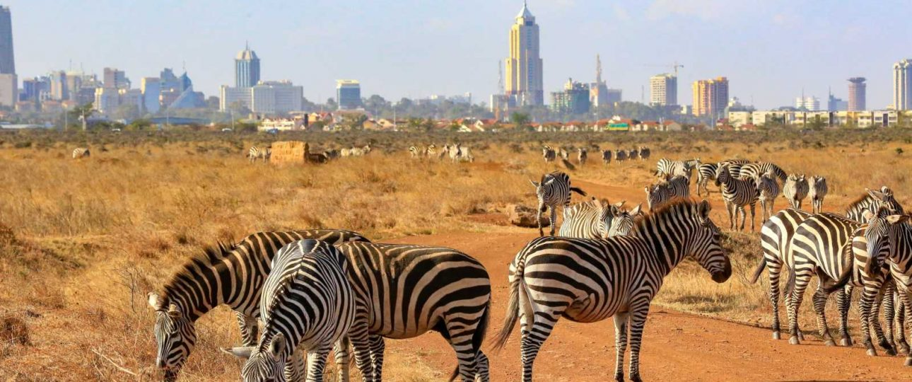 Where to stay in Nairobi